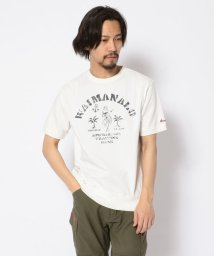 AVIREX/SH/TYPE BLUE/ピグメント染 クルーネックTシャツ/PIGMENT WAIMANALO CREW T-SHIRT/502968819
