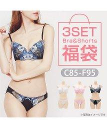 clette/【C-F】刺繍ブラジャー&ショーツ3点セット福袋/502970460