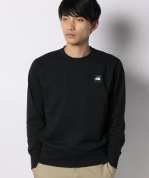 nano・universe/THE NORTH FACE/Heather Logo Crew/502960861