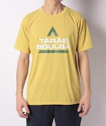 TARAS BOULBA/タラスブルバ/メンズ/ドライミックス レトロロゴTシャツ/502979291