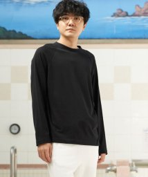 URBAN RESEARCH/URBAN SENTO×HAAG CREW-NECK LONG-SLEEVE CUT AND SEW/502990253