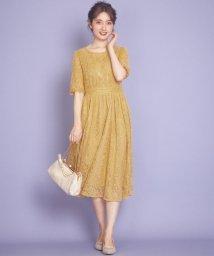 Feroux/マカロンカラーレース ドレス/502990450