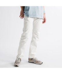 Levi's/501(R) ORIGINAL FIT KASBAH/502990614