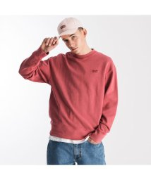 Levi's/AUTHENTIC LOGO CREWNECK EARTH RED/502990888
