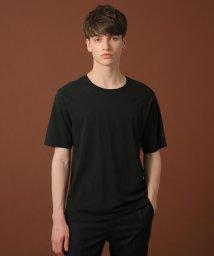 DRESSTERIOR/天竺オーガニックコットン(綿)Tシャツ/502991620