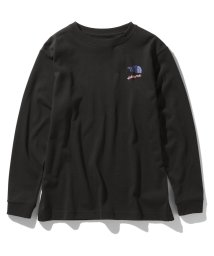 THE NORTH FACE/ノースフェイス/レディス/L/S EXTREME TEE / ロングスリーブエクストリームティー/502998111