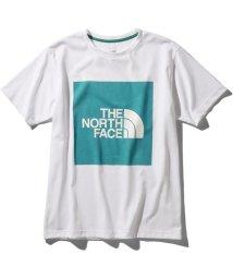 THE NORTH FACE/ノースフェイス/メンズ/S/S COLORED BIG LOGO TEE/502998144