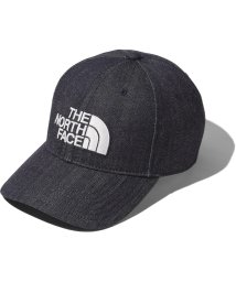 THE NORTH FACE/ノースフェイス/TNF LOGO CAP/502998160