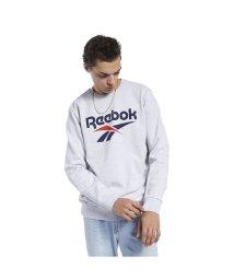 Reebok/リーボック/メンズ/CL F ベクター クルー/502998231
