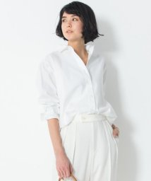 NIJYUSANKU(LARGE SIZE)/【洗える】Cancliniチュニック シャツ/502998724