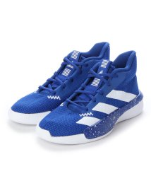 adidas/アディダス adidas adidas PRO NEXT 2019 K EF9810 (BLUE)/502924976