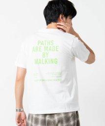 WEGO/バックプリントロゴTシャツ/502930668