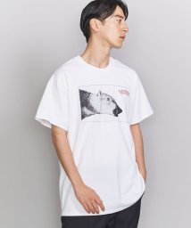 BEAUTY&YOUTH UNITED ARROWS/<DREAMLAND SYNDICATE> ARCTIC BEAR TEE/Tシャツ/502933190
