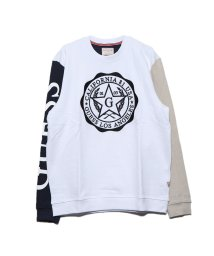 GUESS/ゲス GUESS KENYON FLEECE CREWNECK SWEAT (WHITE NAVY AND MINK COMBO)/502952151