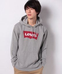 LEVI'S MEN/GRAPHIC PO HOODIE B HM PO CO MIDTONE HEA/502976906