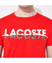 LACOSTESPORTS MENS/グラフィックプリントTシャツ/503005012