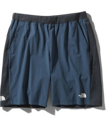THE NORTH FACE/ノースフェイス/メンズ/HYBRID AMBTION SHORT/503007632