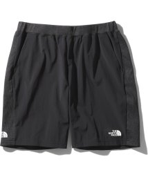 THE NORTH FACE/ノースフェイス/メンズ/HYBRID AMBTION SHORT/503007633