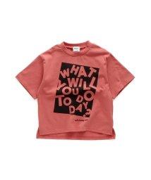BREEZE/WEB限定 ボックスロゴ半袖Tシャツ/502878832