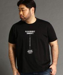 HIDEAWAYS NICOLE L/<大きいサイズ>ロゴプリントTシャツ/503008830