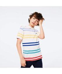 LACOSTE KIDS/Boys マルチボーダーストライプポロシャツ/503040250