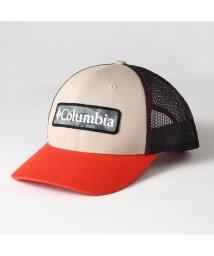 Columbia/コロンビア/キッズ/コロンビアユーススナップバックハット/503042203