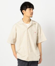 GLOSTER/【DANTON/ダントン】コットンポプリン ワイドシャツ #JD-3609/503028003