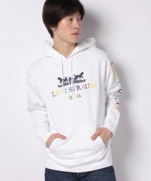 LEVI'S MEN/GRAPHIC PO HOODIE B 90S LOGO TEXT WHITE/503026096