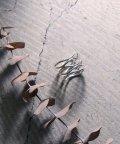 MAISON mou/【YArKA/ヤーカ】siver925 randam pole ring[rpr]/不揃いリング シルバー925 /503051788