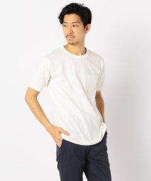 GLOSTER/【LOOP WHEEL】吊り編み天竺 クルーネックTシャツ/503046344