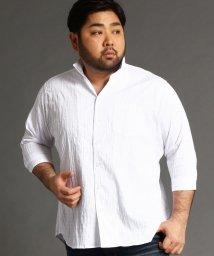 HIDEAWAYS NICOLE L/<大きいサイズ>タックジャガードシャツ/503008827