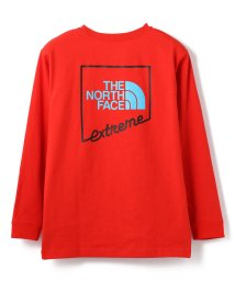 LHP/THE NORTH FACE/ザ・ノースフェイス/LongSleeve Extrema Tee/ロングスリーブエクストリームティー/503066599