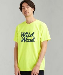 green label relaxing/[ ザ デイ オン ザ ビーチ ] SC THE DAY Wild Wood Tシャツ/503053575