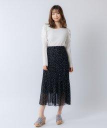 Rewde/シフォンプリーツスカート(0R10-CK167)/503053964