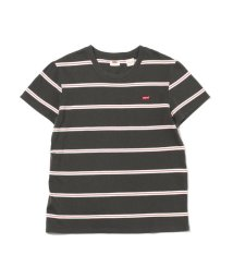 Levi's/パーフェクトTシャツ AMIRA STRIPE FORGED IRON/503068714