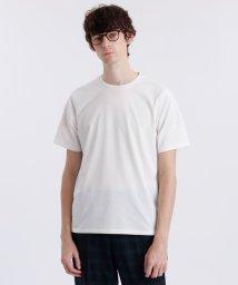 MACKINTOSH PHILOSOPHY/TROTTERクルーネックTシャツ/502888466