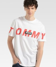 TOMMY JEANS/【オンライン限定】ビッグロゴTシャツ/503050530
