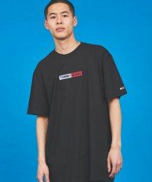 TOMMY JEANS/エンブロイダリーボックスロゴTシャツ/503050534