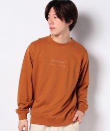 WEGO/シンプル刺繍ロゴプルオーバースウェット/502930664