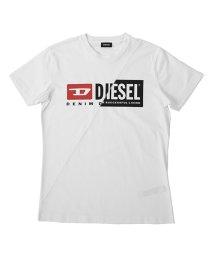 DIESEL/DIESEL T-DIEGO-CUTY ディーゼル 斜め切り替え Tシャツ 00SDP1-0091A/503077242