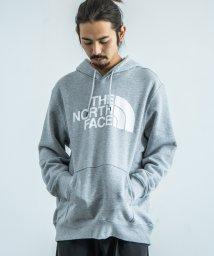 Rocky Monroe/THE NORTH FACE ザ・ノースフェイス パーカー メンズ レディース プルオーバー Mens Half Dome Pullover Hoodie シン/503090792