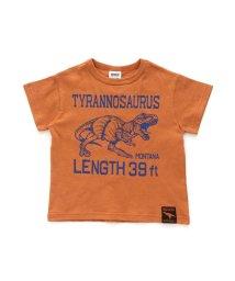BREEZE/恐竜3柄Tシャツ/502878901