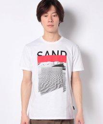 SISLEY/コットンプリント半袖Tシャツ・カットソー/503067767