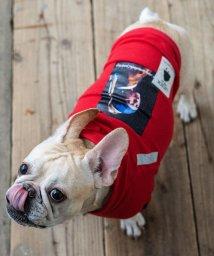 Rocky Monroe/ドッグウェア 犬服 ペット プルオーバーパーカー ペーパーハンガー付き 真珠の耳飾りの少女 プリント リフレクター 反射材 愛犬 小型犬 中型 フレンチブルドッ/503091577