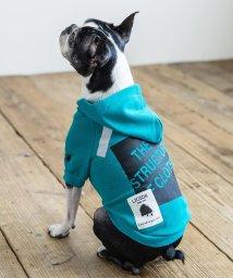 Rocky Monroe/ドッグウェア 犬服 ペット プルオーバーパーカー ペーパーハンガー付き プリント ロゴ ボックス リフレクター 反射材 愛犬 小型犬 中型 フレンチブルドッグ /503091579