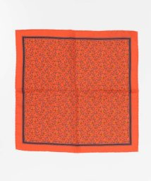 URBAN RESEARCH/URBAN RESEARCH Tailor BASILE BROWN SCARF2/503093129