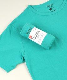 Rocky Monroe/Hanes ヘインズ Tシャツ メンズ レディース カラーT 半袖 クルーネック インナー カットソー 無地 ボーダー 薄手 シンプル 春夏 HM1-P101 /503094374