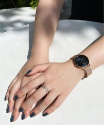 HIROB Ladys/DW00100161 PETITE【 ウォッチ 】/503109136