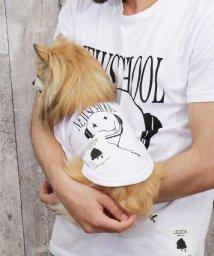 Rocky Monroe/犬 服 ペアルック ペットとお揃い ドッグウエア 小型犬 中型犬 LICICK リシック 7363/503111004