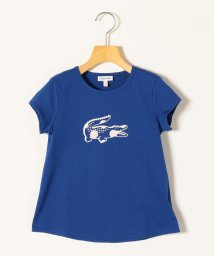 SHIPS any WOMENS/LACOSTE:ロゴ Tシャツ<KIDS>/503113154
